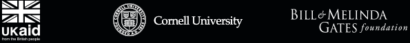 UKAID Cornell University Bill and Melinda Gates Foundation